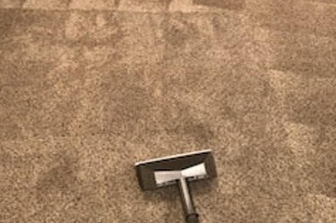 carpet cleaning waynesville nc